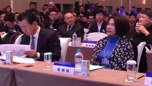 中国企业领袖年会现场董明珠和王健林